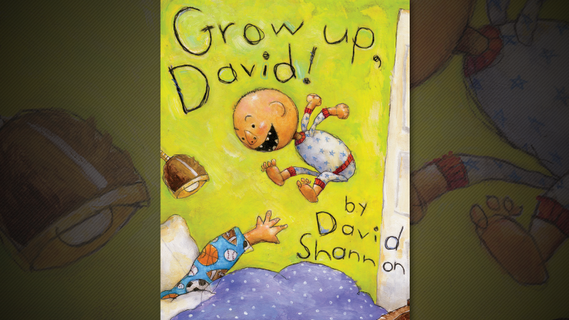 Author Visit – David Shannon